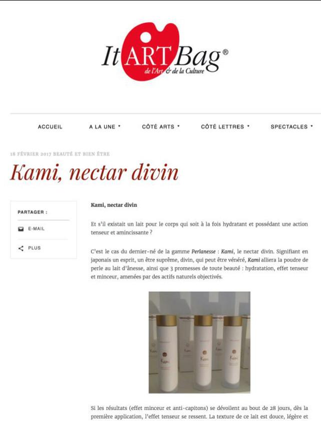 It Art bag
