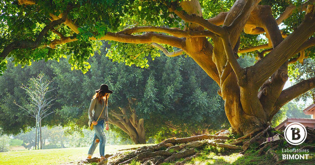En MTC, le pied est considéré comme la racine de l'arbre